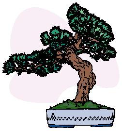 animasi-bergerak-pohon-bonsai-0013