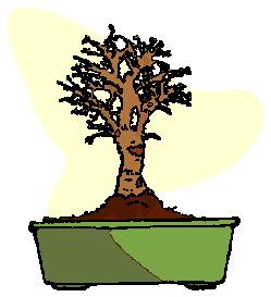 animasi-bergerak-pohon-bonsai-0018