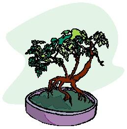animasi-bergerak-pohon-bonsai-0024