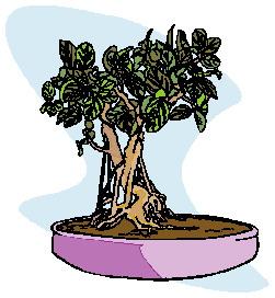animasi-bergerak-pohon-bonsai-0025