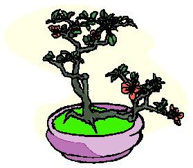 animasi-bergerak-pohon-bonsai-0026