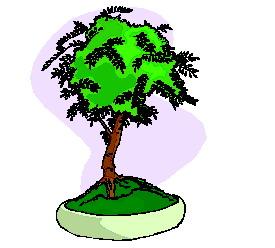 animasi-bergerak-pohon-bonsai-0027