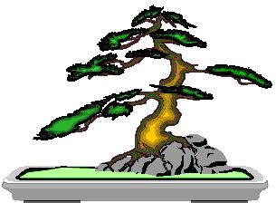 animasi-bergerak-pohon-bonsai-0029