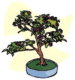animasi-bergerak-pohon-bonsai-0032