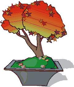 animasi-bergerak-pohon-bonsai-0033
