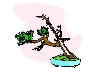 animasi-bergerak-pohon-bonsai-0034