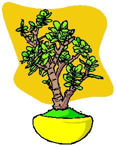 animasi-bergerak-pohon-bonsai-0035