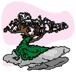 animasi-bergerak-pohon-bonsai-0036