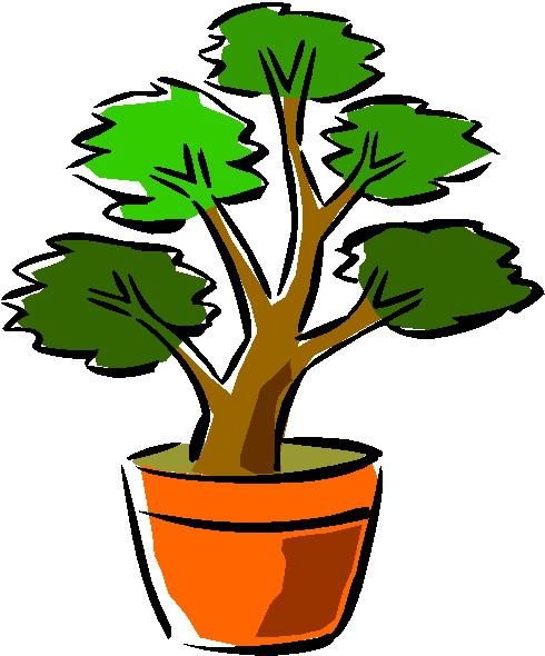 animasi-bergerak-pohon-bonsai-0037
