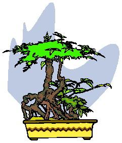 animasi-bergerak-pohon-bonsai-0039