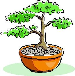 animasi-bergerak-pohon-bonsai-0040