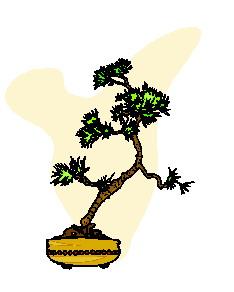 animasi-bergerak-pohon-bonsai-0046