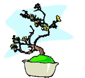 animasi-bergerak-pohon-bonsai-0047