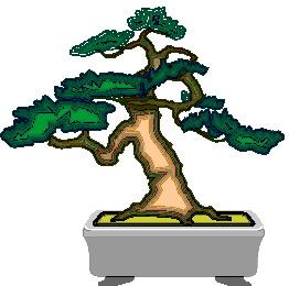 animasi-bergerak-pohon-bonsai-0048