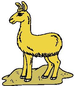 animasi-bergerak-llama-0010