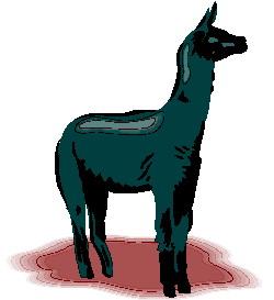 animasi-bergerak-llama-0015
