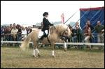 animasi-bergerak-pelatih-kuda-0020