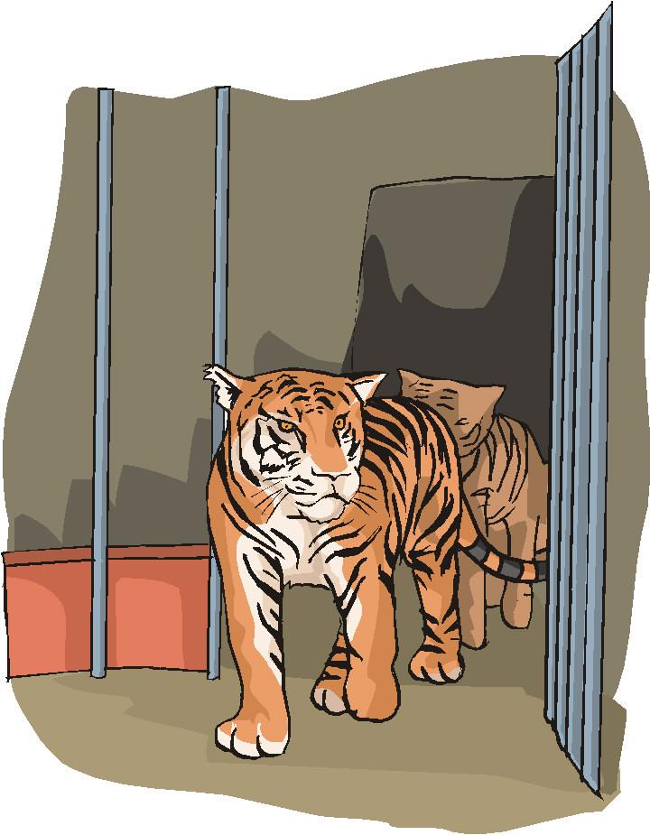 animasi-bergerak-kebun-binatang-0089