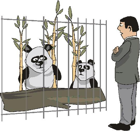 Kebun Binatang Gif Gambar Animasi Amp Animasi Bergerak