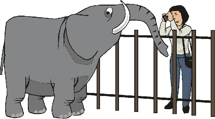 animasi-bergerak-kebun-binatang-0119