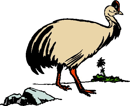 animasi-bergerak-burung-unta-0083