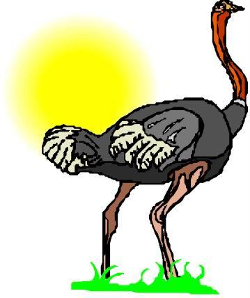 animasi-bergerak-burung-unta-0086