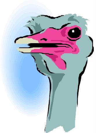 animasi-bergerak-burung-unta-0088