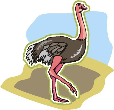 animasi-bergerak-burung-unta-0093