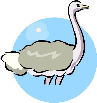 animasi-bergerak-burung-unta-0107