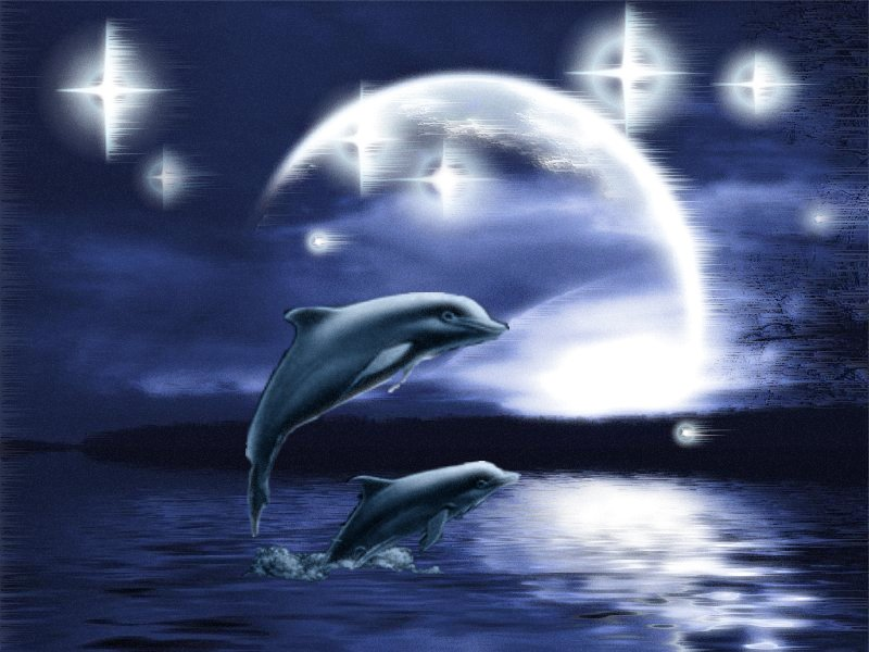 animasi-bergerak-laut-lautan-0003