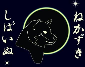 animasi-bergerak-anjing-shiba-0047