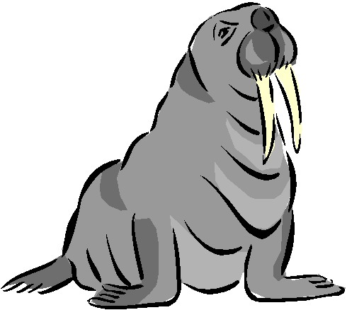 animasi-bergerak-walrus-0010