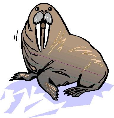 animasi-bergerak-walrus-0011