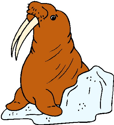 animasi-bergerak-walrus-0012