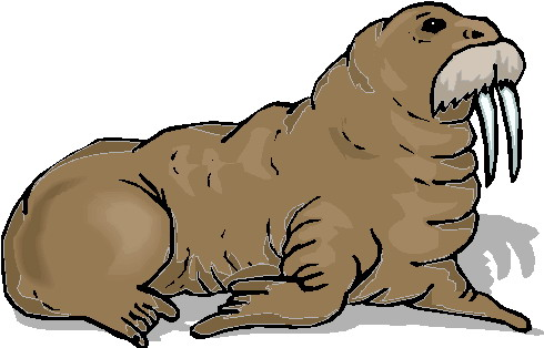 animasi-bergerak-walrus-0016