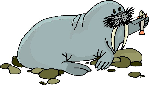 animasi-bergerak-walrus-0026
