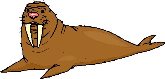 animasi-bergerak-walrus-0036