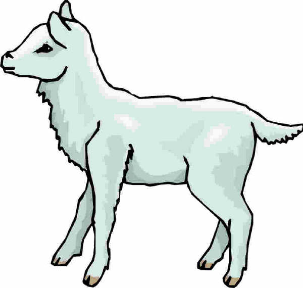 animasi-bergerak-domba-paskah-0025
