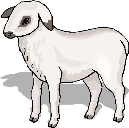 animasi-bergerak-domba-paskah-0027