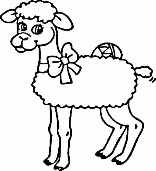 animasi-bergerak-domba-paskah-0042