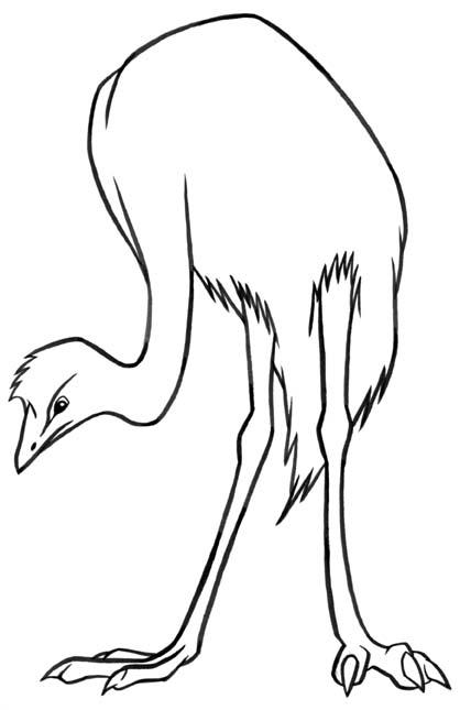 animasi-bergerak-mewarnai-burung-0037