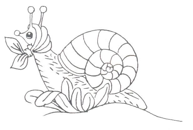 animasi-bergerak-mewarnai-serangga-0013
