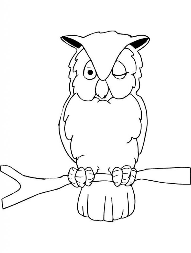 animasi bergerak mewarnai burung hantu 0006