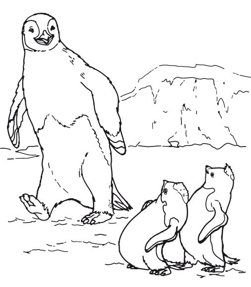 animasi-bergerak-mewarnai-pinguin-0001