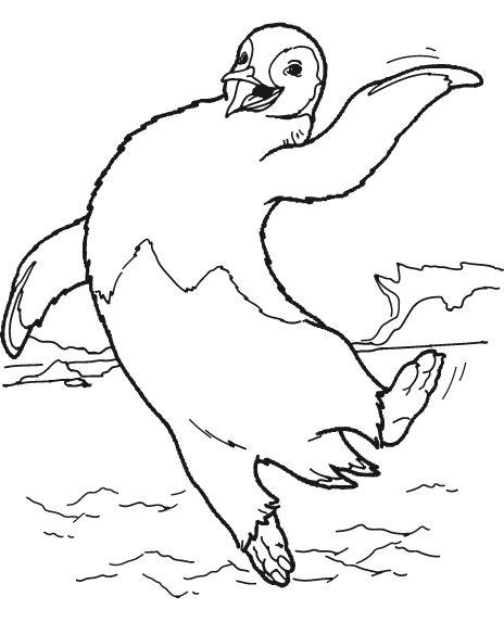 animasi-bergerak-mewarnai-pinguin-0020