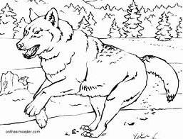 animasi-bergerak-mewarnai-serigala-0003