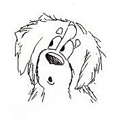 animasi-bergerak-anjing-gunung-bernese-0238
