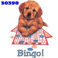 animasi-bergerak-bingo-0025